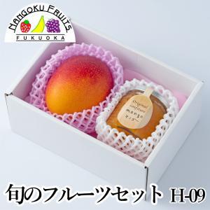 旬のフルーツセット H09|kajitsumura