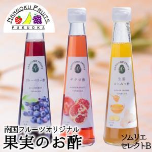 南国フルーツオリジナル・果実の「お酢」ソムリエセットB|kajitsumura