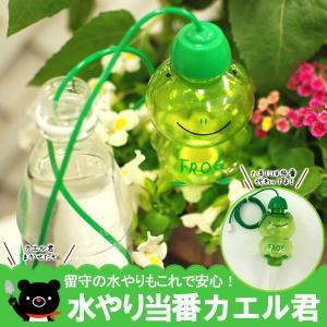 ●商品内容 水やり当番カエル君 1個 ※カエルには少し製造時のすり傷のようなものがございますが、ご了...