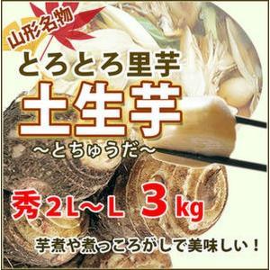 里芋 さといも 山形 秀 A品 2L 〜 L サイズ 3kg 土生芋 とちゅうだ 土付き 皮付き サ...