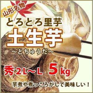 里芋 さといも 山形 秀 A品 2L 〜 L サイズ 5kg 土生芋 とちゅうだ 土付き 皮付き サ...