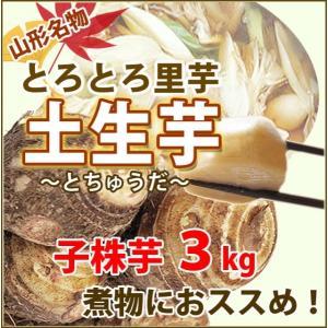 訳あり 里芋 優 B品 3kg 土生芋 とちゅうだ 土付き 皮付き 我家で採れた 里芋 サトイモ 山...
