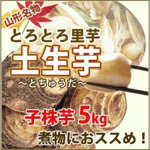 訳あり 里芋 優 B品 5kg 土生芋 とちゅうだ 土付き 皮付き 我家で採れた 里芋 サトイモ 山...