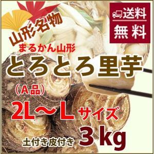 里芋 3kg 秀 A品 2L 〜 L サイズ さといも 山形産 まる勘 サトイモ 芋煮 煮物 土付き...