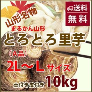 里芋 10kg 秀 A品 2L 〜 L サイズ さといも 山形産 まる勘 サトイモ 芋煮 煮物 土付...