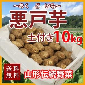 里芋 悪戸芋 あくど芋 10kg 山形 サトイモ さといも 土芋 土付き 皮付き 種芋 送料無料 芋...