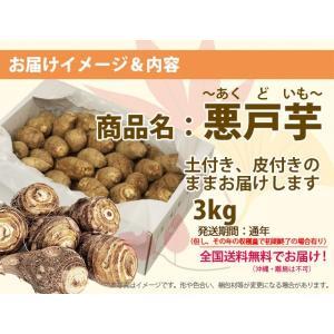 里芋 悪戸芋 あくど芋 3kg 山形 サトイモ さといも 土芋 土付き 皮付き 種芋 送料無料 芋煮会 収穫 旬 kajuaru 02