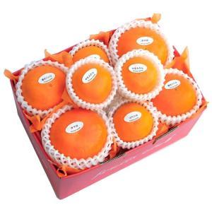 柑橘詰合せ3500円(セット 詰め合わせ)