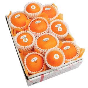 柑橘詰合せ4500円(セット 詰め合わせ)