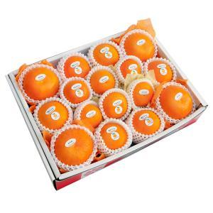 柑橘詰合せ6500円(セット 詰め合わせ)