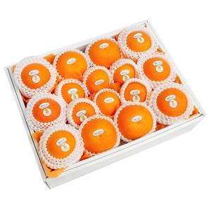 柑橘詰合せ8500円(セット 詰め合わせ)