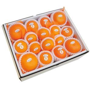 柑橘詰合せ10500円(セット 詰め合わせ)