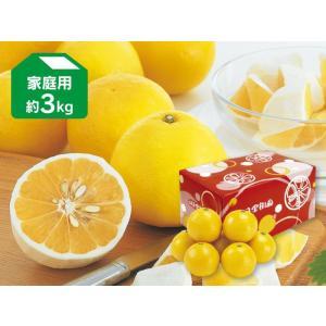 ニューサマーオレンジ約3kg-家庭用(日向夏)