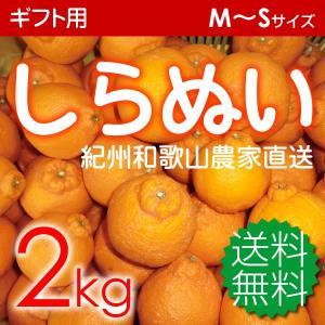 贈答用しらぬい(デコポン)2kg 小玉10〜11玉...