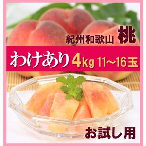 訳あり桃 和歌山 児玉農園の桃  約4kg10玉〜16玉...