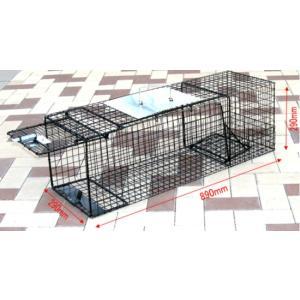 小動物キャッチハウス 踏み板式捕獲器|kakashiya