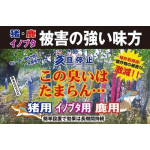 猪やイノブタ、鹿による作物被害に 亥旦停止(いったんていし)100枚セット イノシシ用|kakashiya