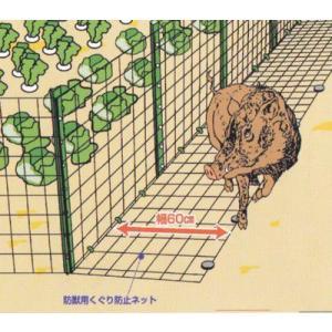 フェンス際からの害獣の侵入を防ぎます!「くぐり防止ネット」|kakashiya