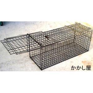 小動物キャッチャー45型 エサ吊り下げ方式 捕獲器 オリ ワナ|kakashiya