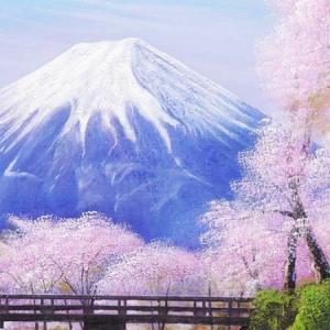 絵画 油絵 忍野富士に桜 F20号 (木村由記...の詳細画像2