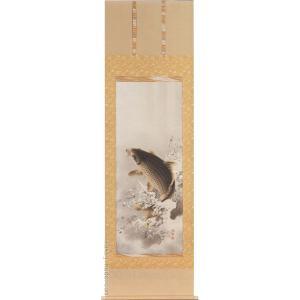 掛け軸 大昇鯉 (佐藤黙雲)  【掛軸】【一間床・半間床】【鯉】|kakejiku