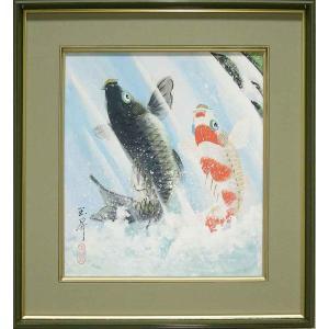 絵画(色紙額) 夫婦滝昇り鯉 (松橋玉昇)  【肉筆】【日本画】【鯉】【変型特寸】|kakejiku