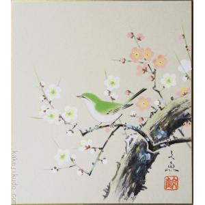 高級色紙「紅白梅に鶯」文魚(色紙絵)|kakejiku