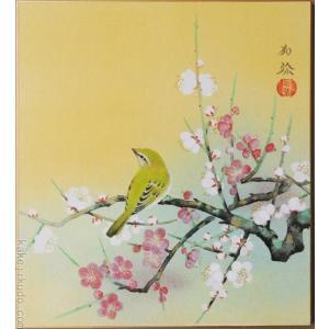 高級色紙「梅に鶯」加弥(色紙絵)|kakejiku