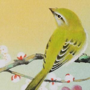 高級色紙「梅に鶯」加弥(色紙絵) kakejiku 03