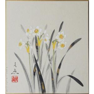 高級色紙「水仙」文魚(色紙絵)|kakejiku