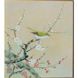 高級色紙「紅白梅に鶯」祥晃(色紙絵)|kakejiku