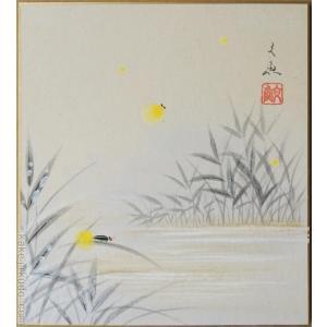 高級色紙「蛍」文魚(色紙絵)|kakejiku