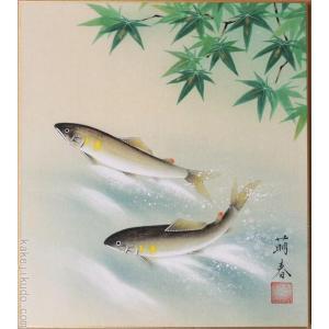 高級色紙「鮎」萌春(色紙絵)|kakejiku