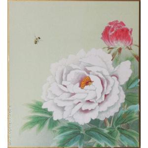 高級色紙「牡丹」紅雲(色紙絵) kakejiku