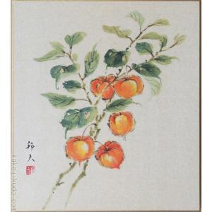 高級色紙「鬼灯(ほおずき)」邦夫(色紙絵)|kakejiku
