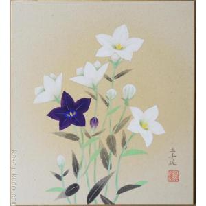 高級色紙「桔梗」三千雄(色紙絵)|kakejiku