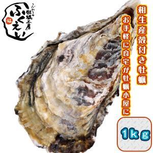 殻付き 牡蠣 1kg【冷蔵便】兵庫県 相生海域 漁師 が販売、とれたて新鮮です。生食用 かき