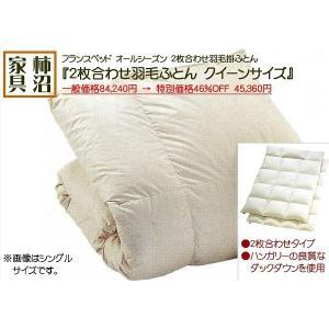 羽毛ふとん 2枚合わせ フランスベッド クイーンサイズ ニューバリュー 220×210cm|kakinumakagu