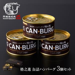 非常食 缶詰 保存食 防災 肉 缶詰め 格之進 ハンバーグ 3缶 セット ギフト 国産牛 白金豚 無添加|kakunoshin