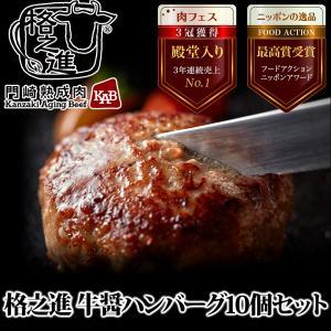 格之進 牛醤 ハンバーグ 10個セット ギフト 冷凍 送料無料 無添加 国産牛 白金豚|kakunoshin