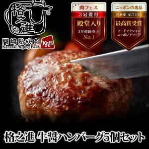 格之進 牛醤ハンバーグ 5個セット ギフト 冷凍 送料無料 無添加 国産牛 白金豚|kakunoshin