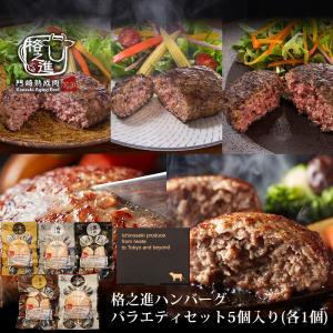 ハンバーグ ギフト 冷凍 格之進ハンバーグ バラエティセット5個入り(各1個) 国産牛 白金豚 無添加|kakunoshin