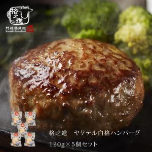 ハンバーグ 温めるだけ 冷凍 送料無料 格之進 ヤケテル白格ハンバーグ (約120g×5個セット) 黒毛和牛 白金豚 無添加|kakunoshin