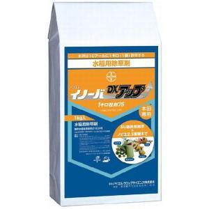 バイエル 水稲用除草剤 イノーバDXアップ 1kg