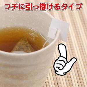 お茶 紅茶 ティーバッグ 和紅茶 べにふうき品種 12個入り2セット 送料無料 国産紅茶 ポイント消化|kakuto|04