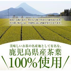 新茶 令和元年産 お茶 鹿児島茶 ゆたかみどり 1キロ 緑茶 1Kg 鹿児島産 送料無料|kakuto|02