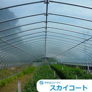 農PO メーター単位切売り シーアイ化成 スカイコート5 幅 630cm×厚み0.10mm...