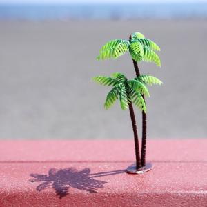 南国や、西海岸オーシャンサイドなどの海沿いに必ずある「Palm Tree」パームツリー!  そんなビ...