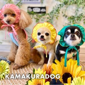 【犬の服】バカンスキャップ|kamakuradog