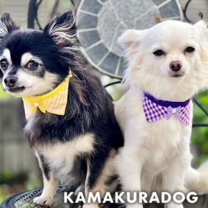 犬猫用ギンガムネクタイ|kamakuradog